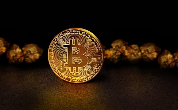 Way To Create Your Bitcoin Appearance Wonderful In Ten Days